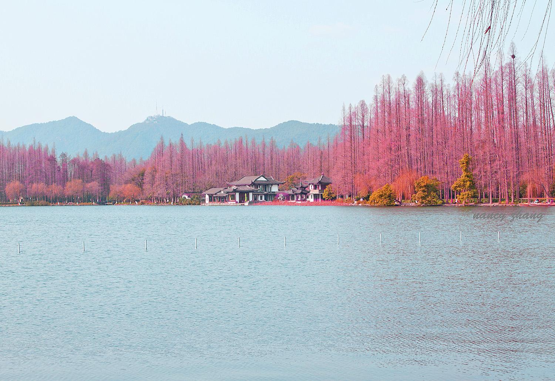 冬日西湖映像