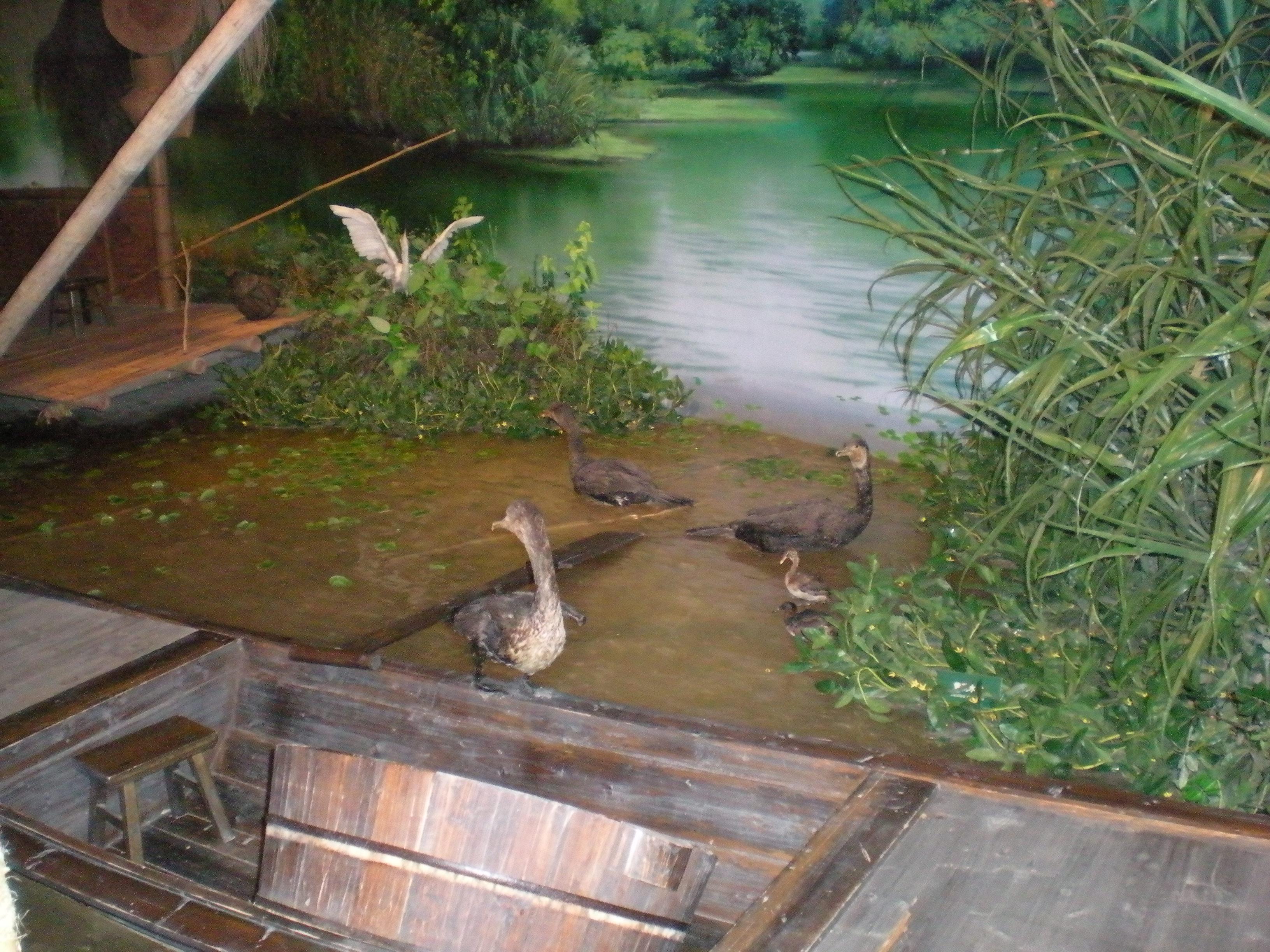 西溪湿地博物馆|杭州游记-携程旅行