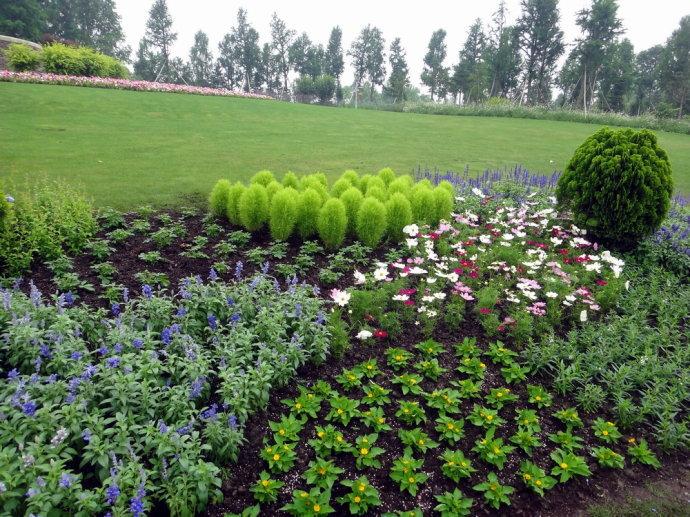 上海辰山植物园一日游记