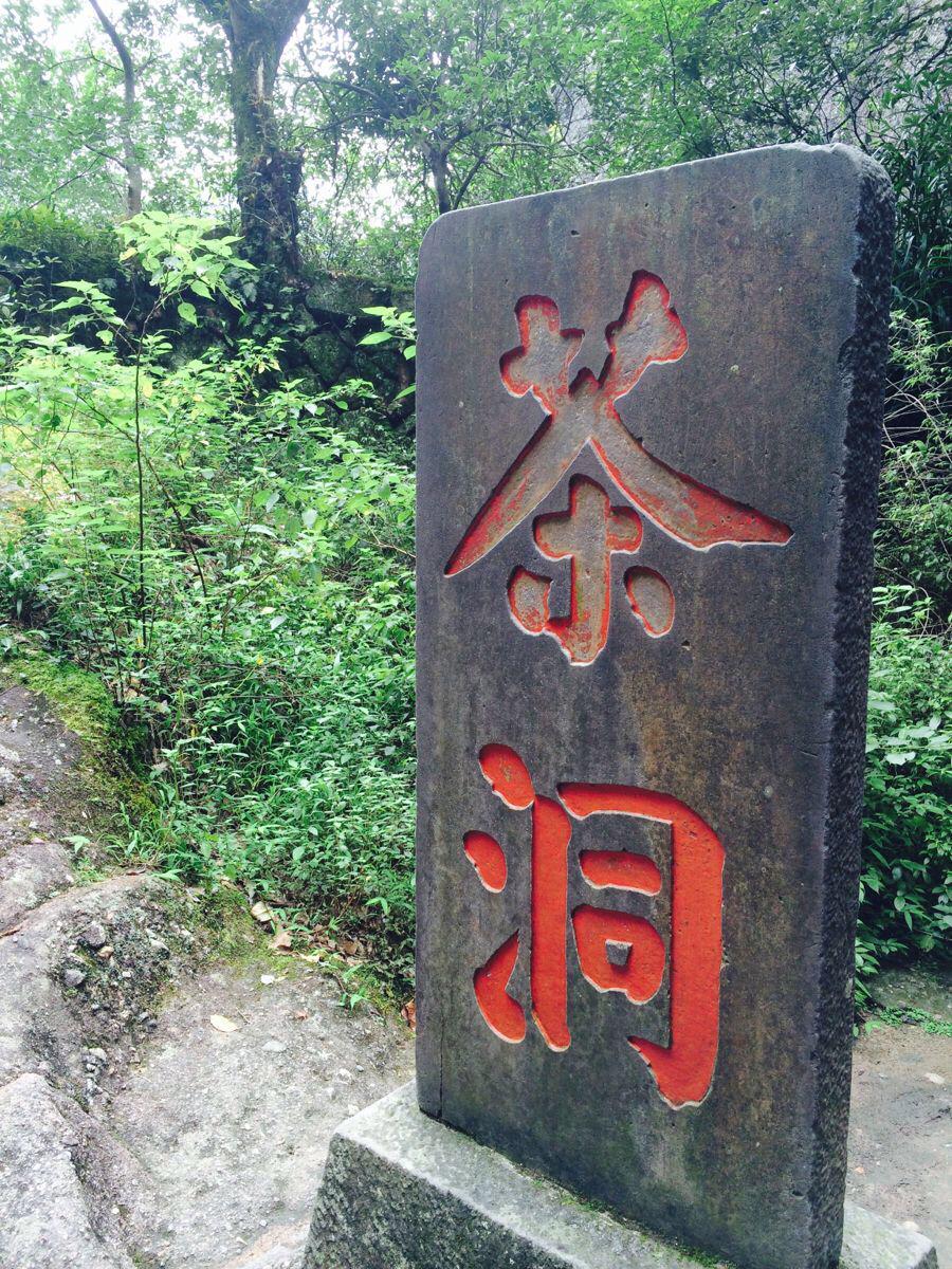 上海到武夷山纯自由行-火车