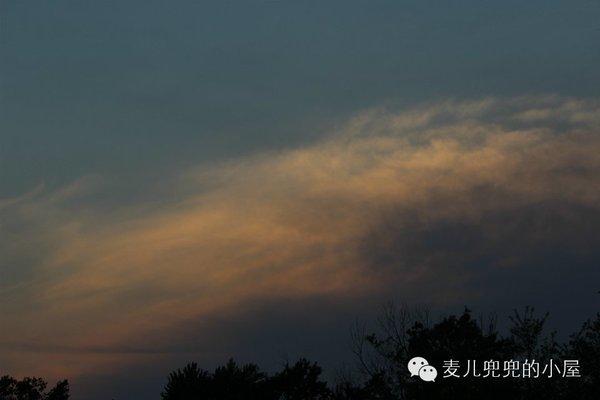 夕阳西下----花儿与少年南戴河之行