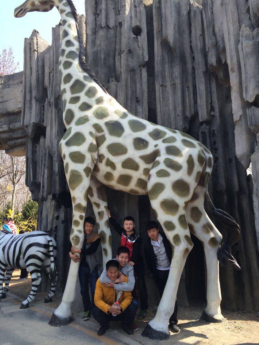 大连—森林动物园