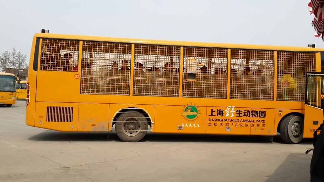 上海野生动物园的一天