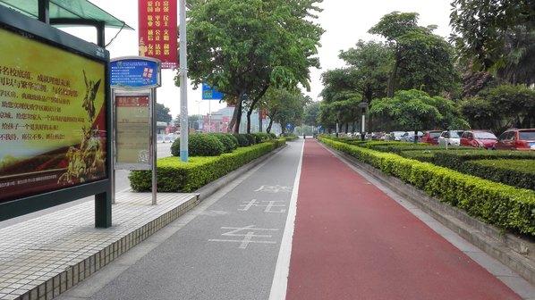 马路绿化效果图