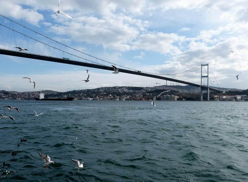曾游览了伊斯坦布尔的博斯普鲁斯海峡大桥.图片