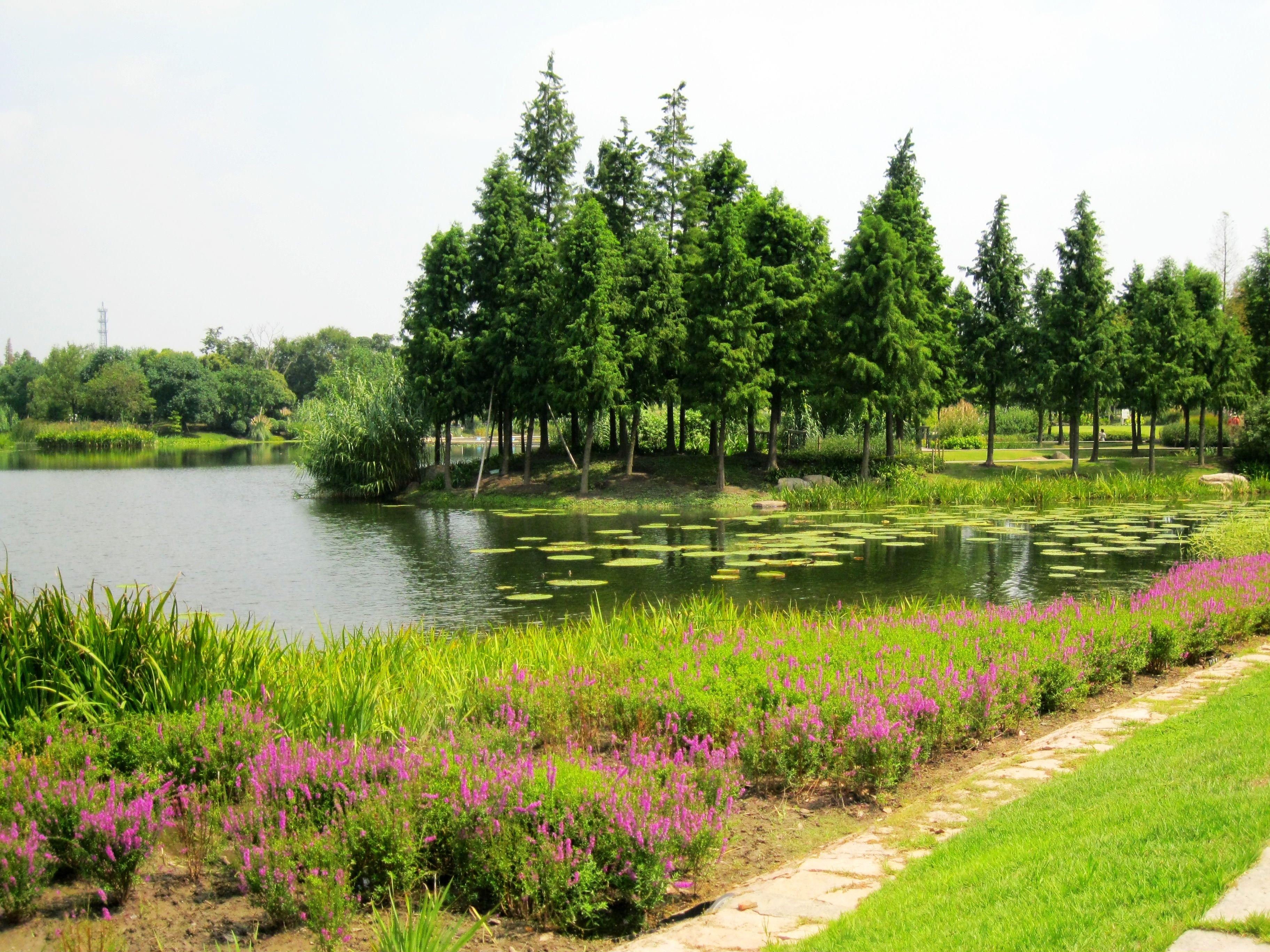 山体植物群落结构