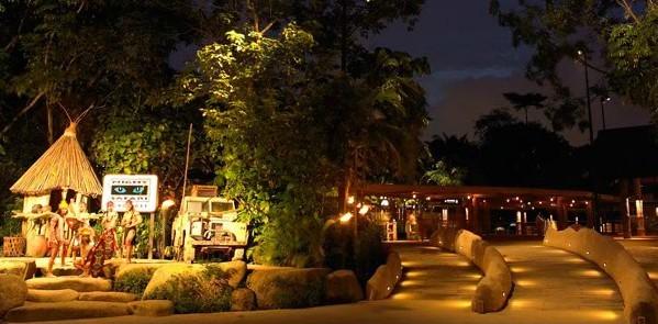 新加坡2日半自助游·环球影城 夜间动物园