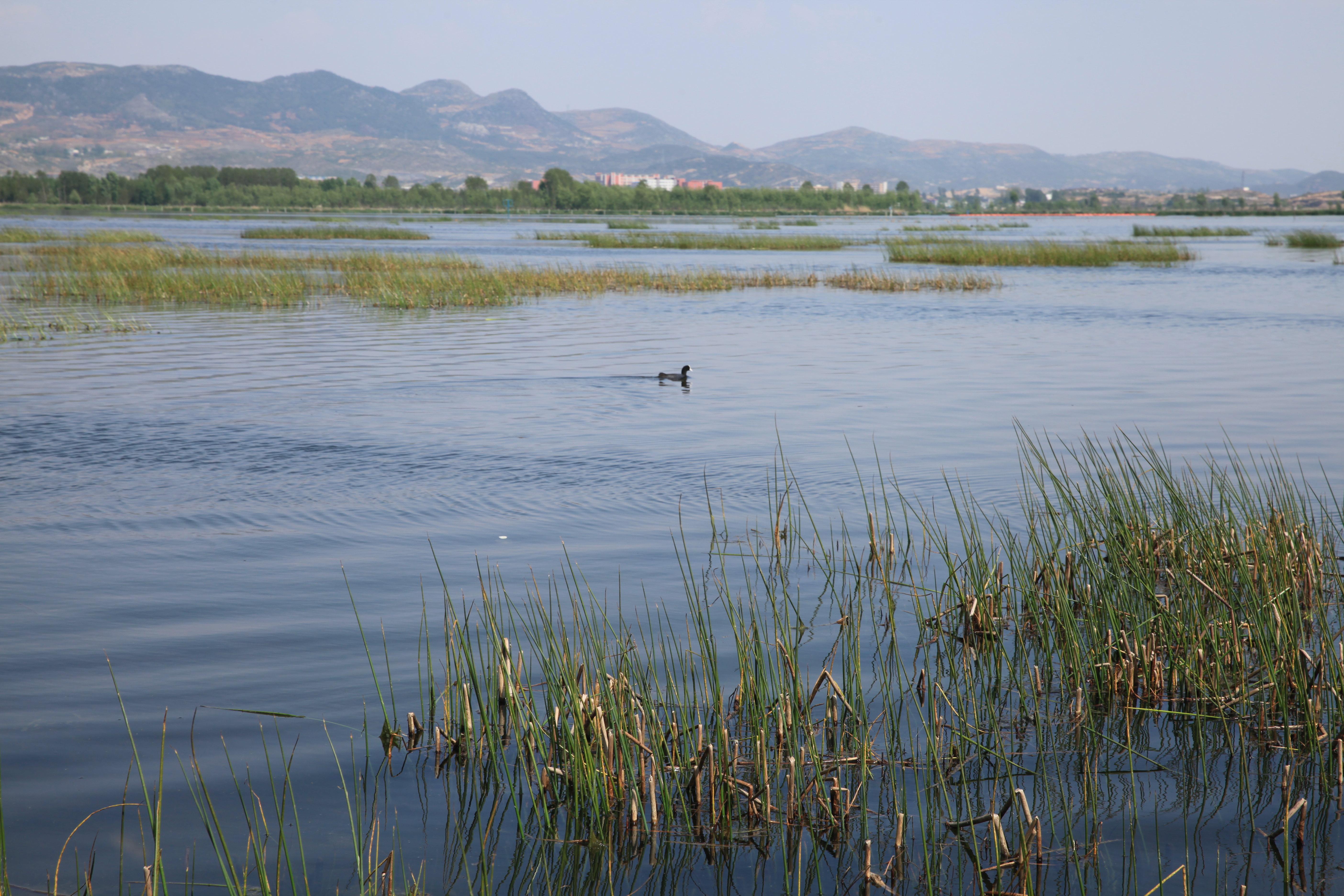 【携程攻略】贵州毕节威宁浪漫草海风景区好玩吗