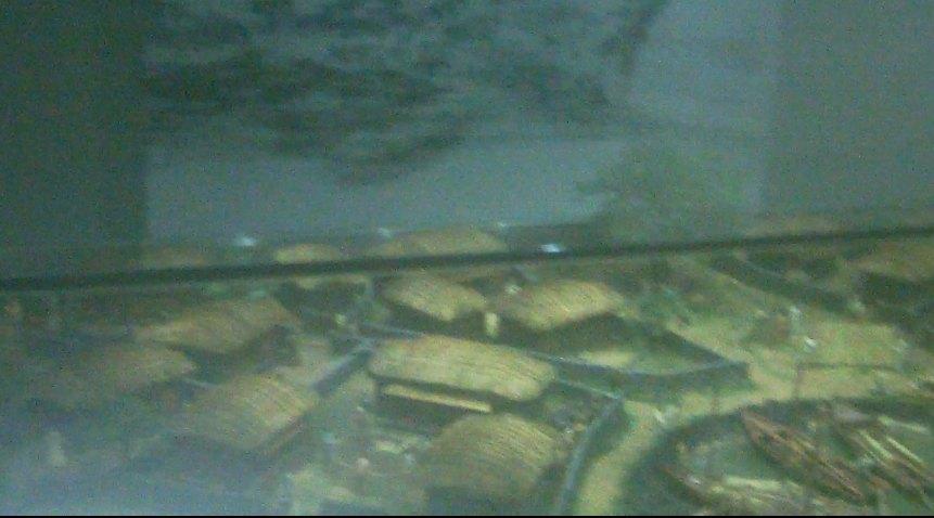 海女算是济州岛的特色之一了。一般购物团不会去写个景点的。这次报的贵一点的纯玩团,行程里就有这个景点。去的时候没有其他人,就我们一行人,地方很大,景色环境都很好。济州有很多博物院,这个海女博物馆参观前先是看片子,通过影片了解了海女的生活。济州当时物资匮乏,女人撑起一片天,通过下海捕捞,改善生活。非常幸苦,有的80多岁了还要下海捕捞,真是辛苦。特殊的地理环境,造就了特殊的人群。展览馆里陈列了海女的工具,房子,食物,很真实。