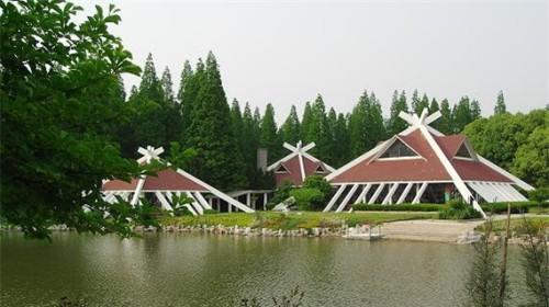 上海崇明东平国家森林公园