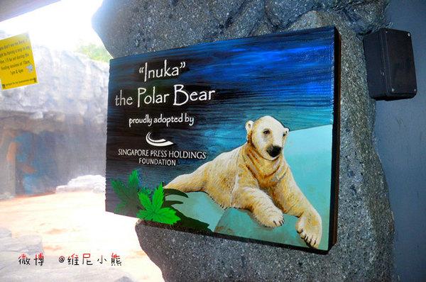 【新加坡】亲子游亚洲唯一河川动物园