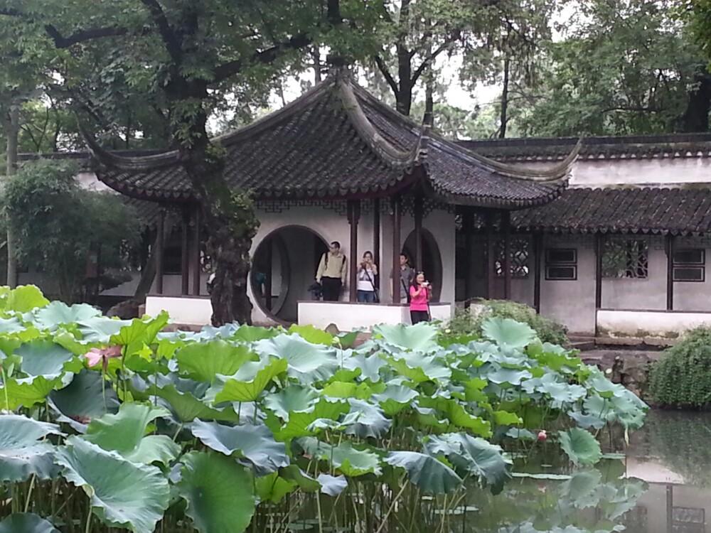 """拙政园是苏州最大、最著名的园林,全园以水为中心,萦绕着错落有致的假山及精致的庭院建筑,花木并茂。这一江南园林典范与北京颐和园、承德避暑山庄、苏州留园并称为""""中国四大名园"""",并被列入世界文化遗产名录。 整个园林的设计十分精巧,游览起来可以说是""""一步一景"""",处处体现着江南水乡的韵味。园中小径曲折,从一重重门廊、镂空图案的石墙,到每个亭子、每扇窗户都不雷同,而且与树木花草搭配得恰到好处,构成一幅幅如画般的风景,你可以花上很多时间来摄影。建议租借一个导览器,了解这些"""