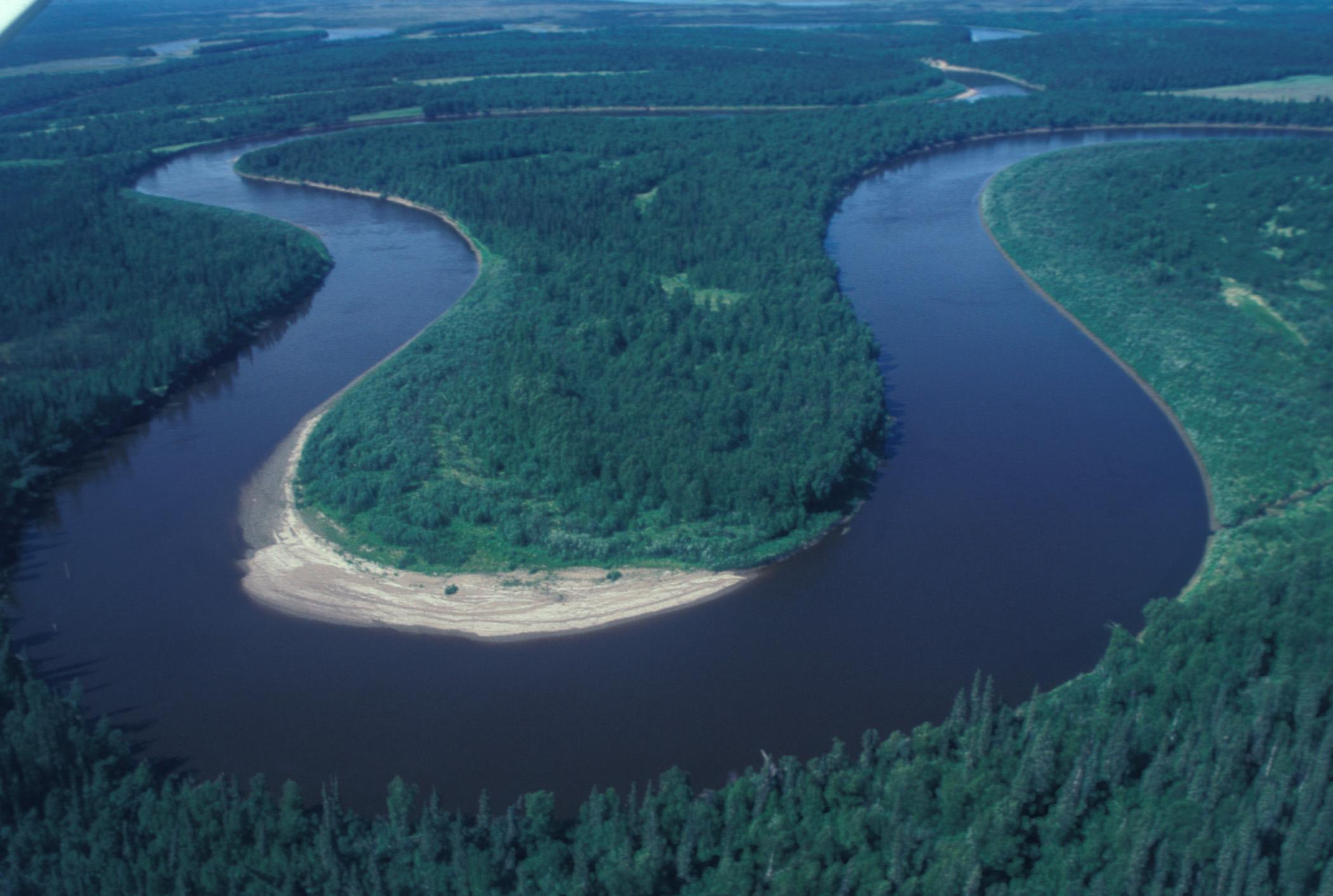 密西西比河三角洲