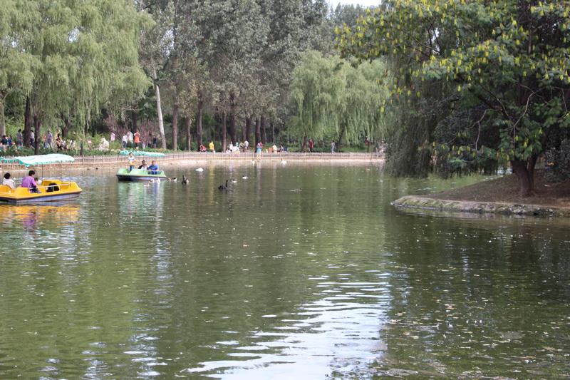 市内的动物园也看过不少了,但是感觉动物们尤其是一些猛兽大多没有什么生气,平时都是懒洋洋的,一点也不活泼。而野生动物园的动物采用放养的方式动物有生气的多。 北京野生动物园位北京市大兴区榆垡镇万亩森林之中,紧临京开路,距离玉泉营42公里。是集动物保护、野生动物驯养繁殖及科普教育为一体的大型自然生态公园。 野生动物园离北京市区还是比较远的,一大早从家出发,先坐车到地铁4号线,下了地铁找不到到野生动物园的公交车,折腾半天倒了2次车到动物园门口就到中午了。停车场车还是不少的,不过还好看起来人还不是很多。 从门口坐上