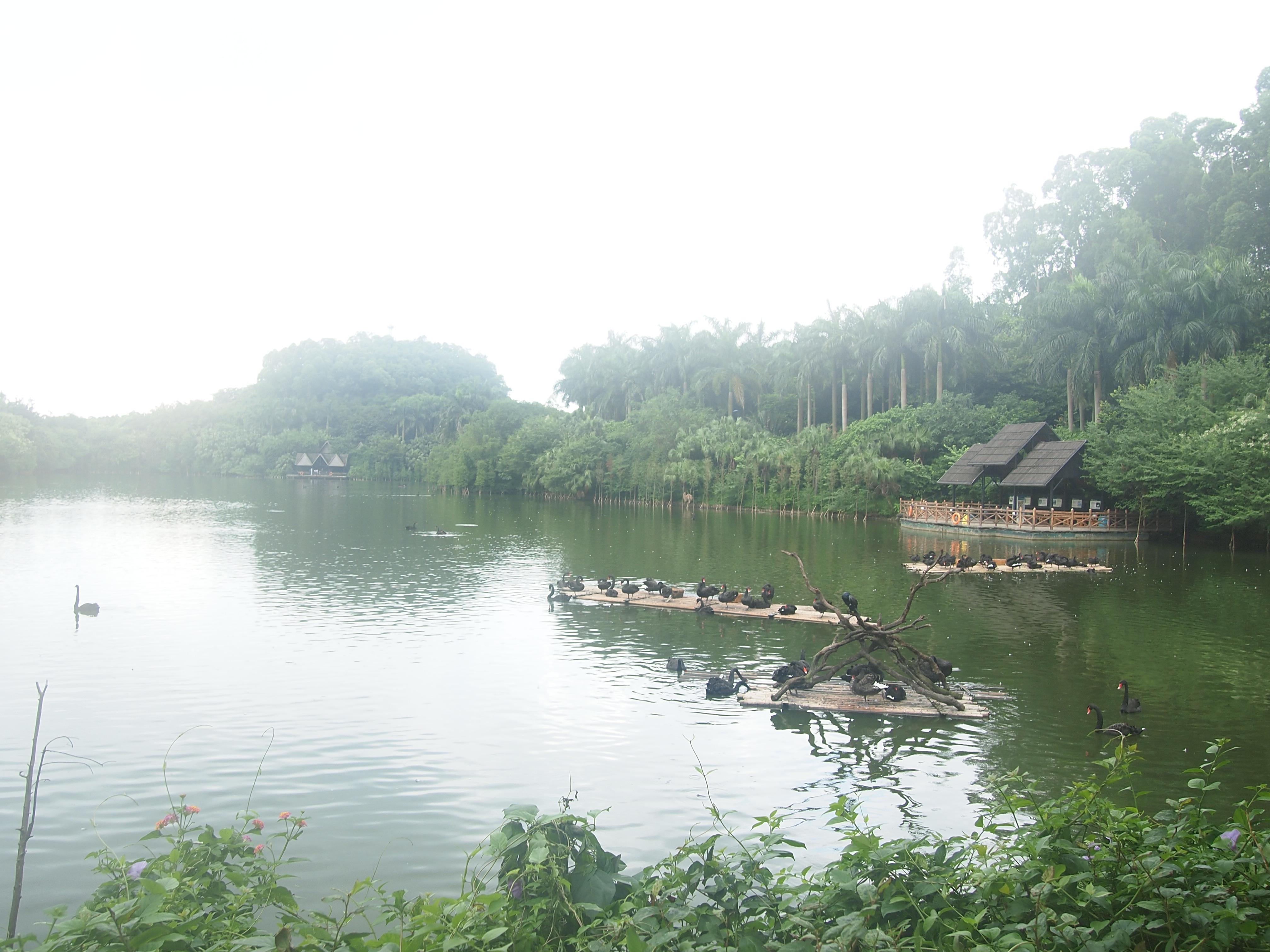 长隆旅游度假区,广州长隆旅游度假区攻略/地址/图片