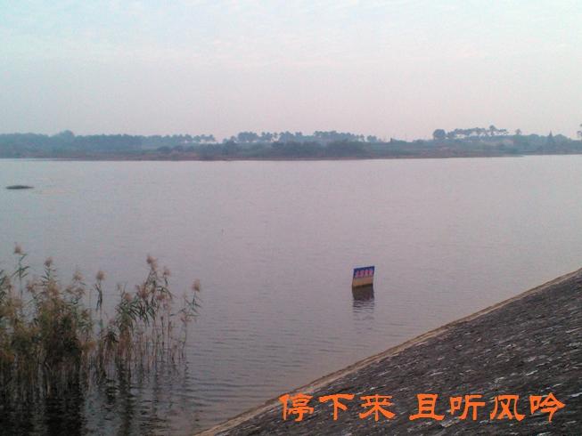 东坝苗圃水库 - 南京游记攻略【携程攻略】