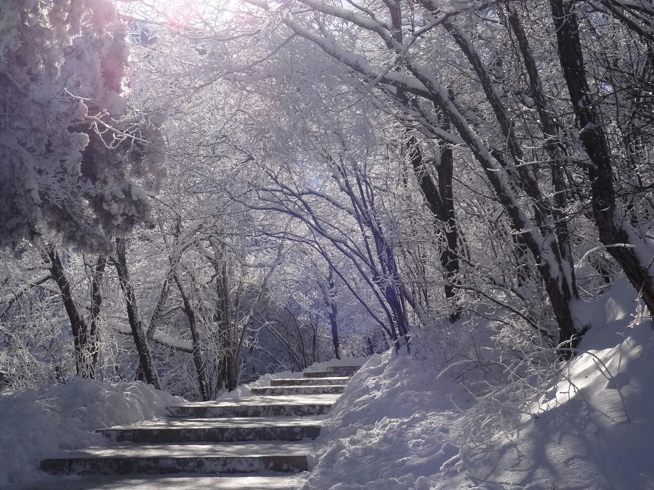 冰雪黄山图片