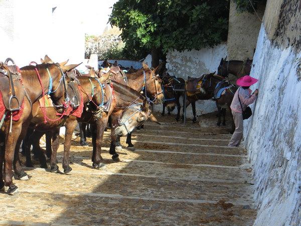 希腊旅行日记6