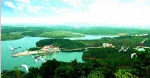 白鹭岛温泉国际度假村