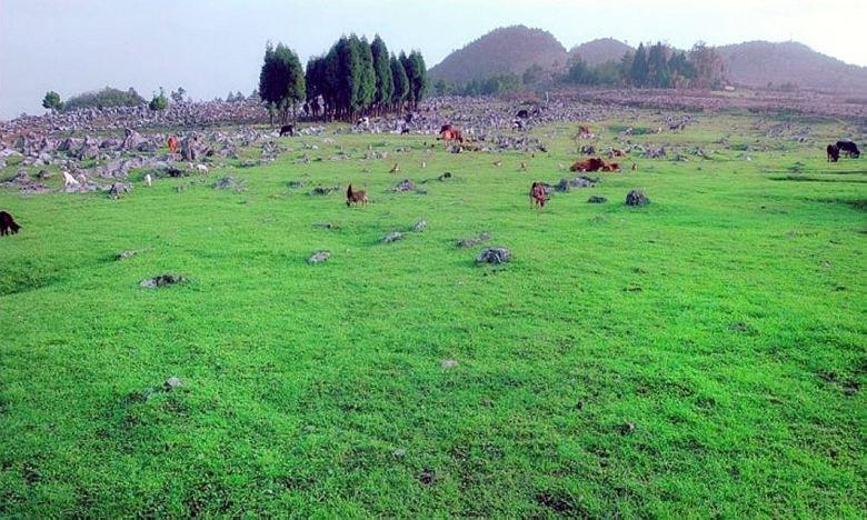 千野草场景区位于重庆市石柱县方斗山山脉岩口至瓦屋沿线,离长江口岸
