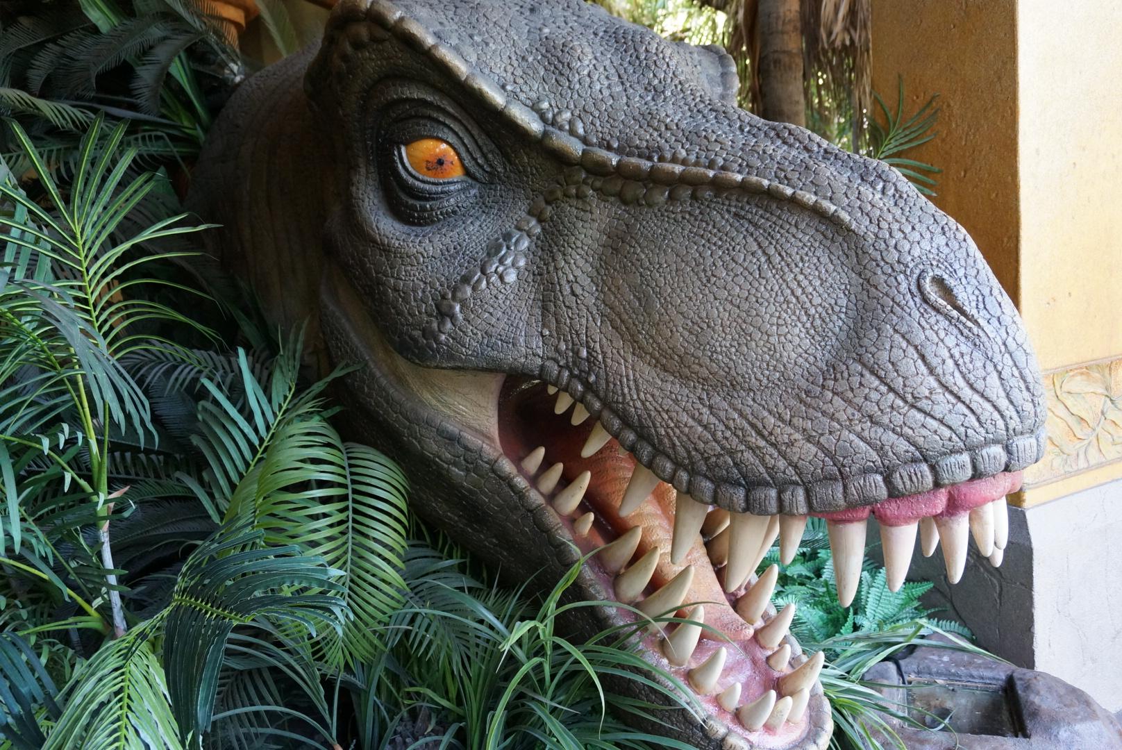 恐龙头 矢量图
