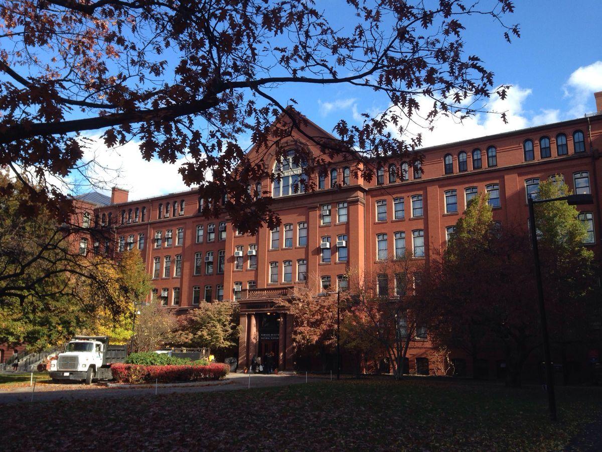 1636年由当地殖民地立法机关立案成立,迄今为止为全美历史最悠久的高等学府。最初称为新市名学校,该机构为了感谢一名年轻的牧师约翰.哈佛先生所作出的捐赠,改名为哈佛学院。1638年哈佛大学成立。 哈佛是美国最古老最著名的大学,在学校的校门头上刻着一个猪头, 是为了时时提醒哈佛的学子不要恃才自傲,要象猪一样谦虚。