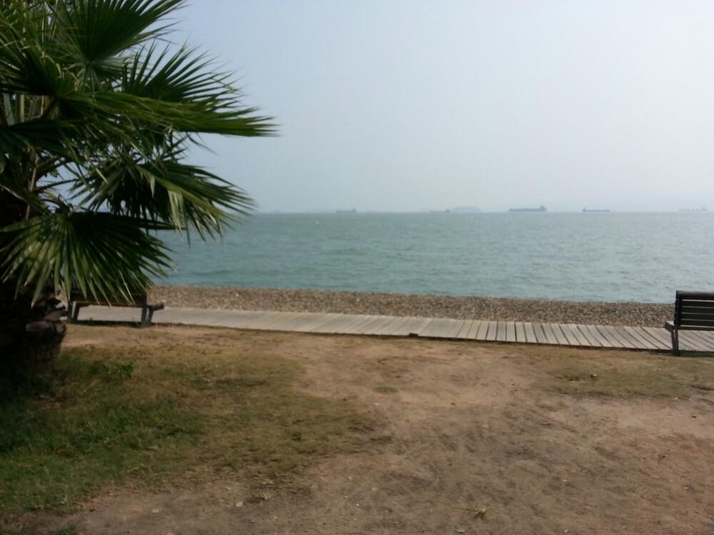 租自行车沿着海边骑骑,一路看风景