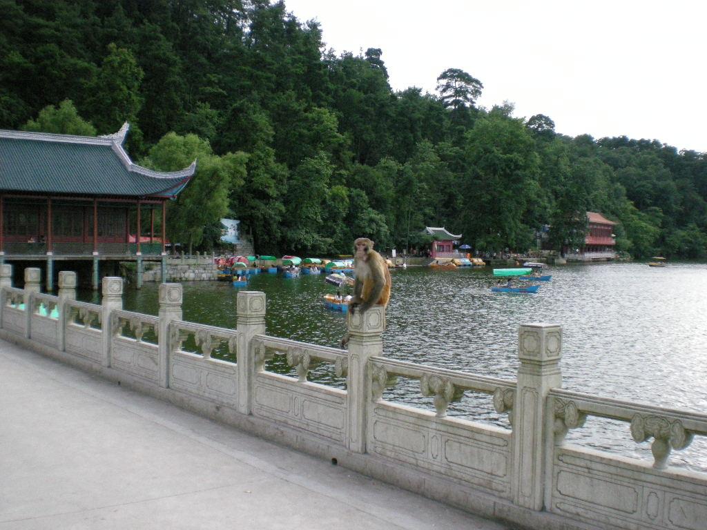 黔灵山公园,贵阳黔灵山公园攻略/地址/图片/门票