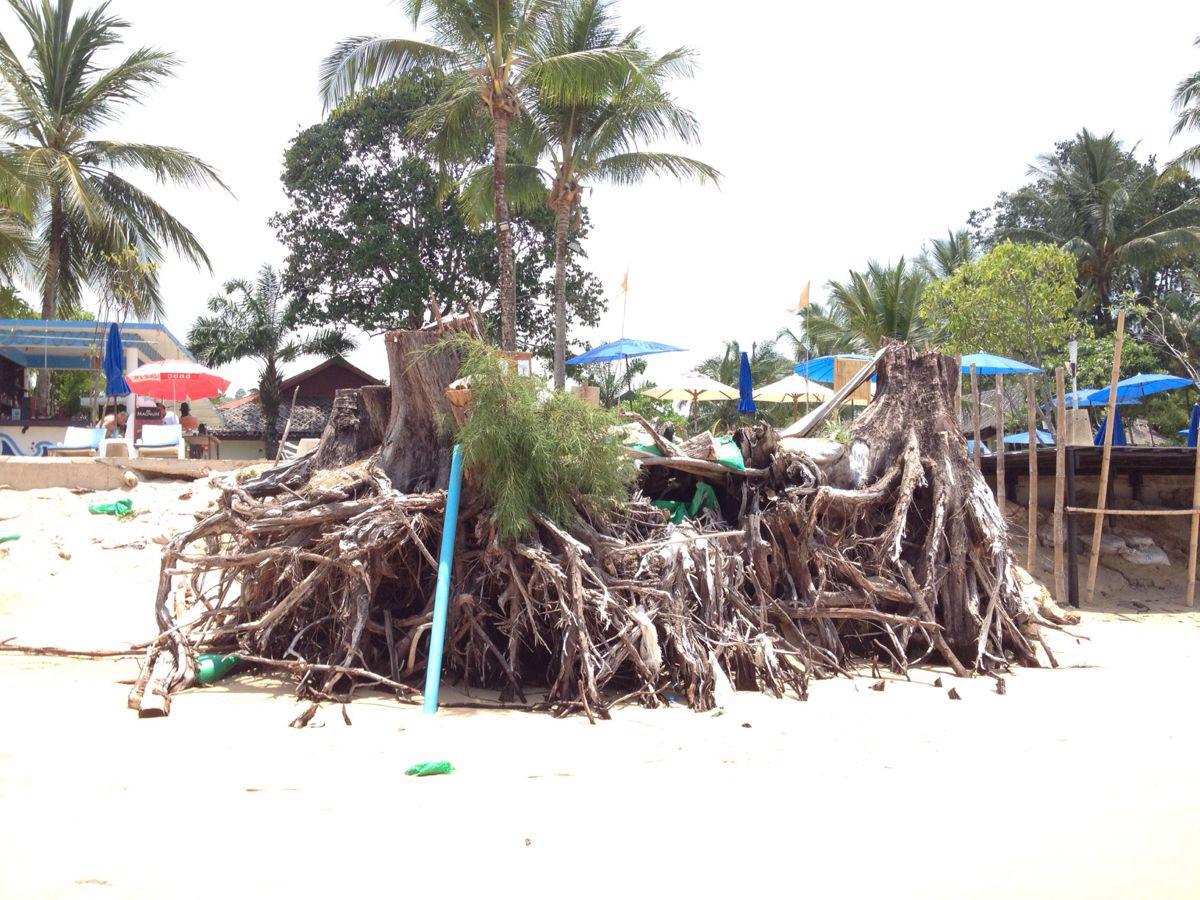 【环球体验】7天5晚普吉岛,考拉自由行之斯米兰,考拉