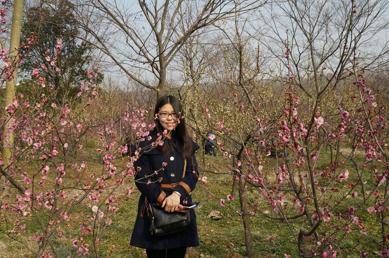 南京梅花山赏梅