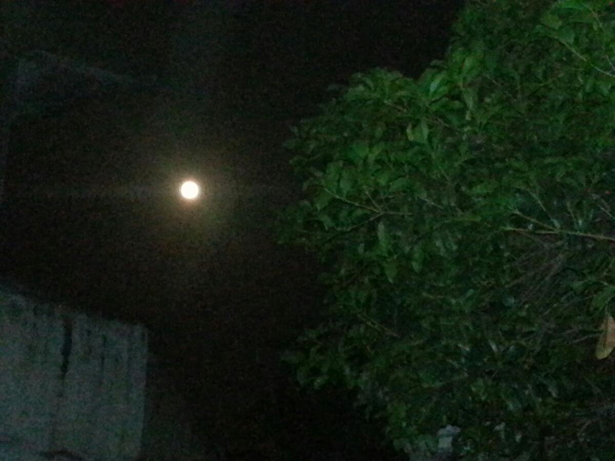 八月十五的月亮