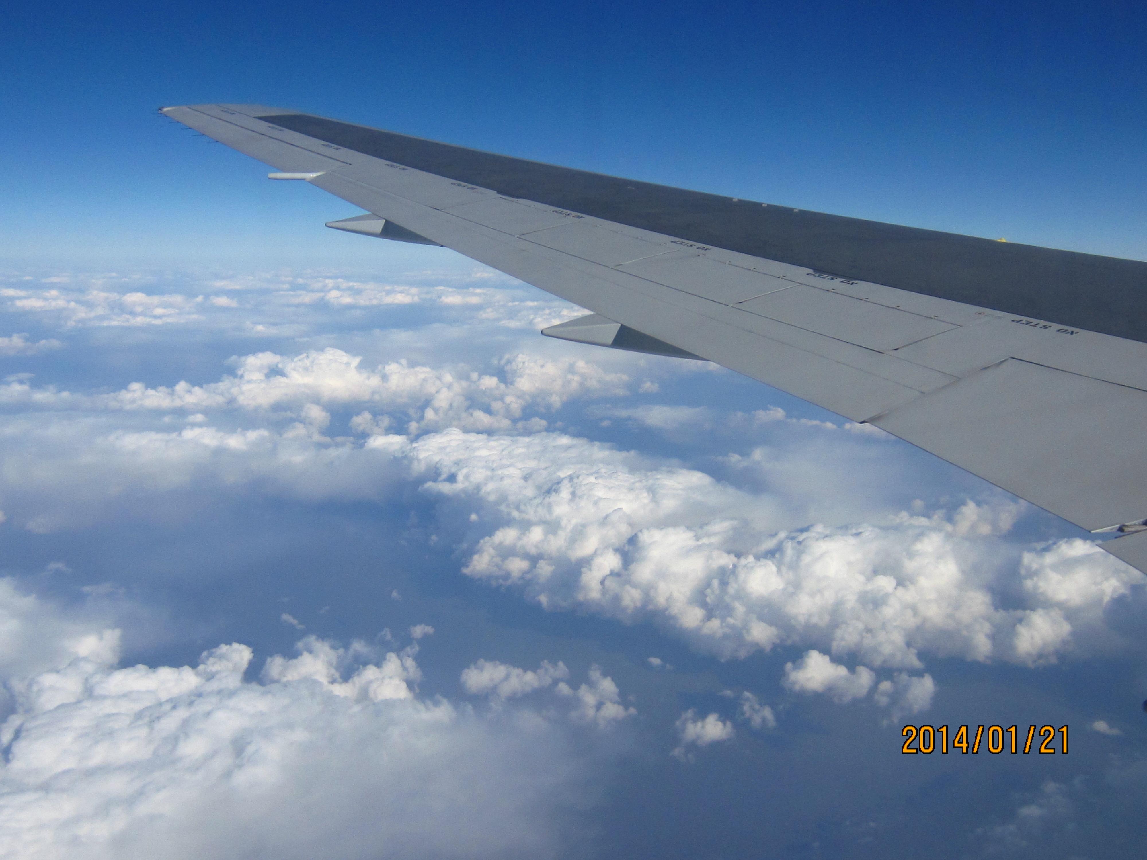 飞机盘旋中我很快找到了圣莫妮卡海滩,威尼斯