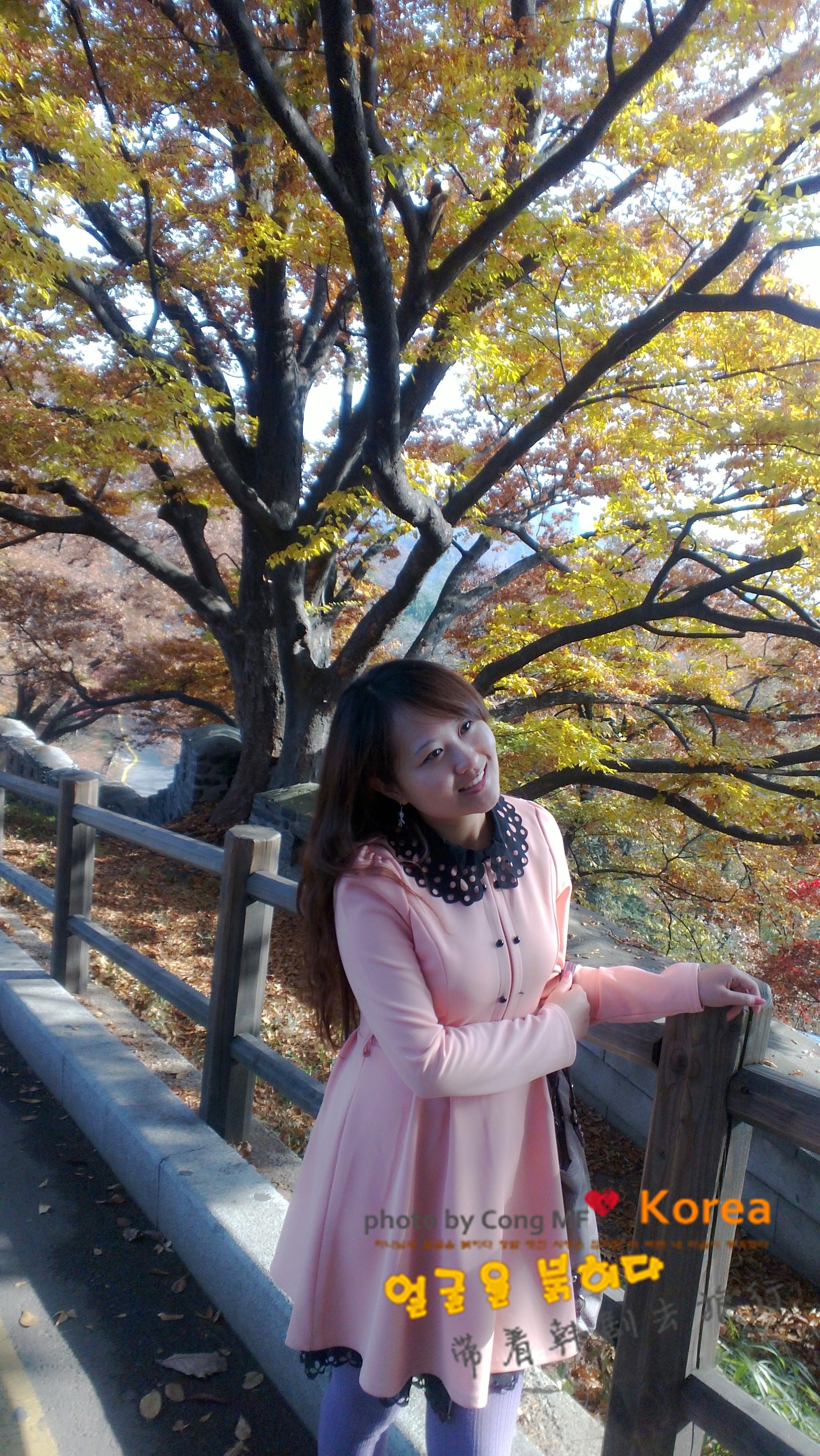 树上挂满了象征爱情永驻