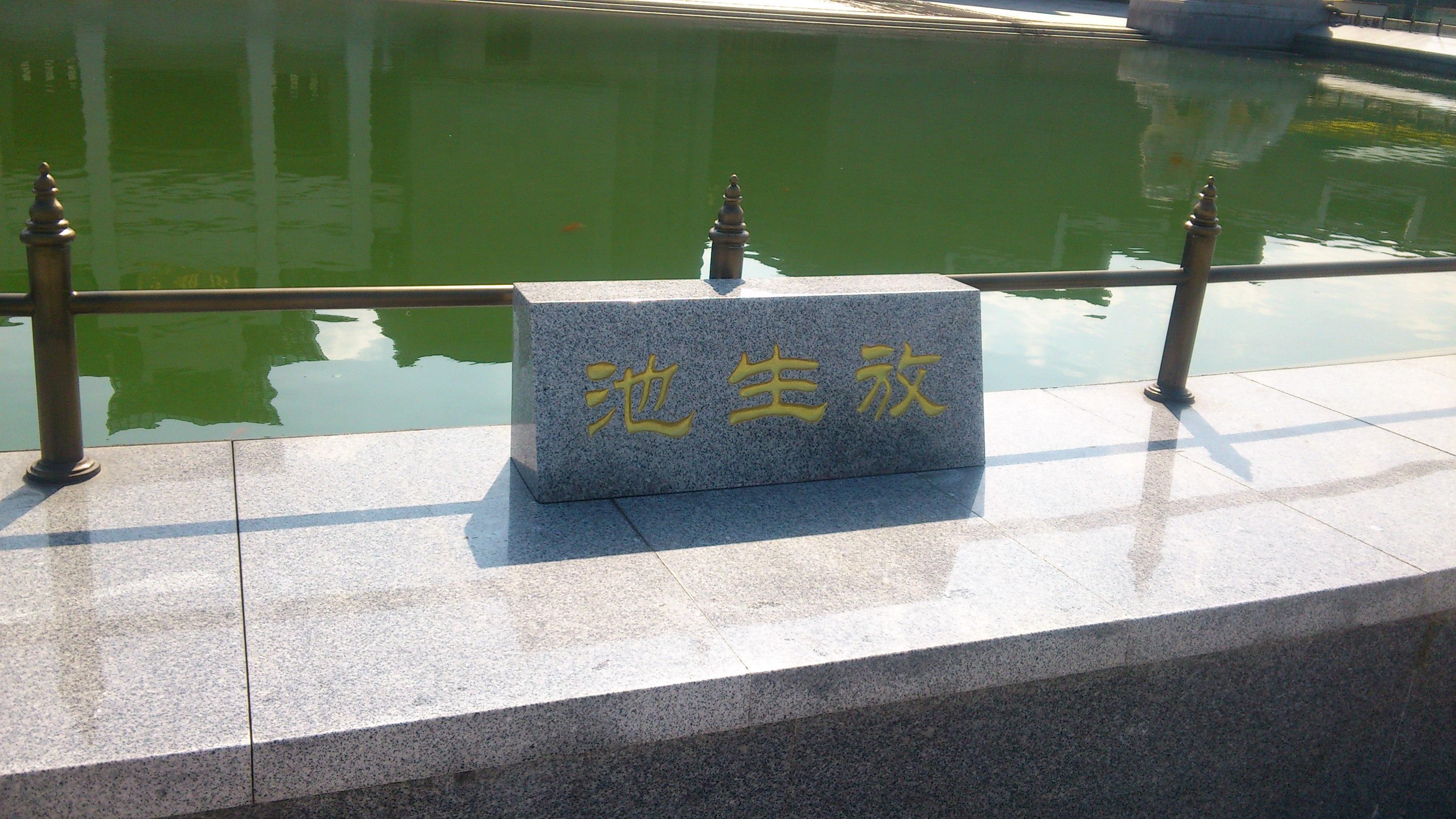 九朵莲花-九华山
