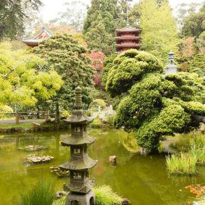 日本茶园旅游景点攻略图