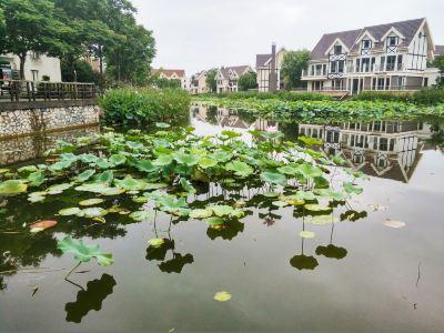 中國醫藥城