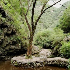 双龙峡旅游景点攻略图