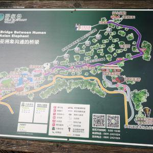 野象谷索道旅游景点攻略图