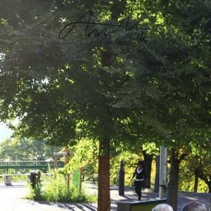 日内瓦大学旅游景点攻略图