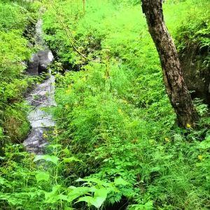 浦江源温泉森林度假村旅游景点攻略图