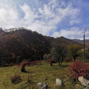 吐鲁沟国家森林公园旅游景点攻略图