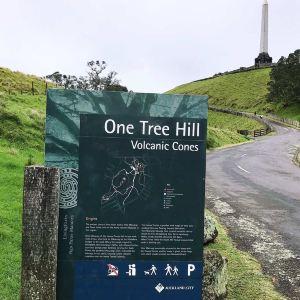 一树山旅游景点攻略图