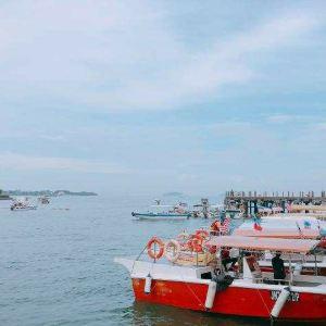 哲斯顿港码头旅游景点攻略图