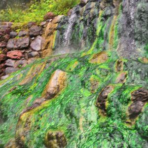 珍珠泉风景区旅游景点攻略图