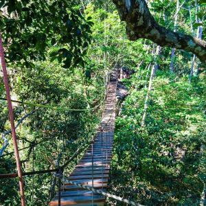 丛林飞跃Flying Hanuman旅游景点攻略图