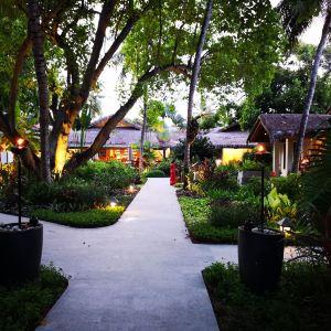 紫象泰国餐厅旅游景点攻略图