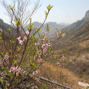 苍岩山 Cangyan Mountain旅游景点攻略图