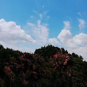 毛公山旅游景点攻略图