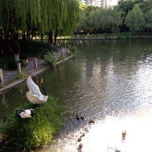 马鞍池公园旅游景点攻略图