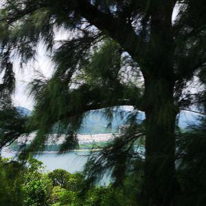 大浪湾旅游景点攻略图